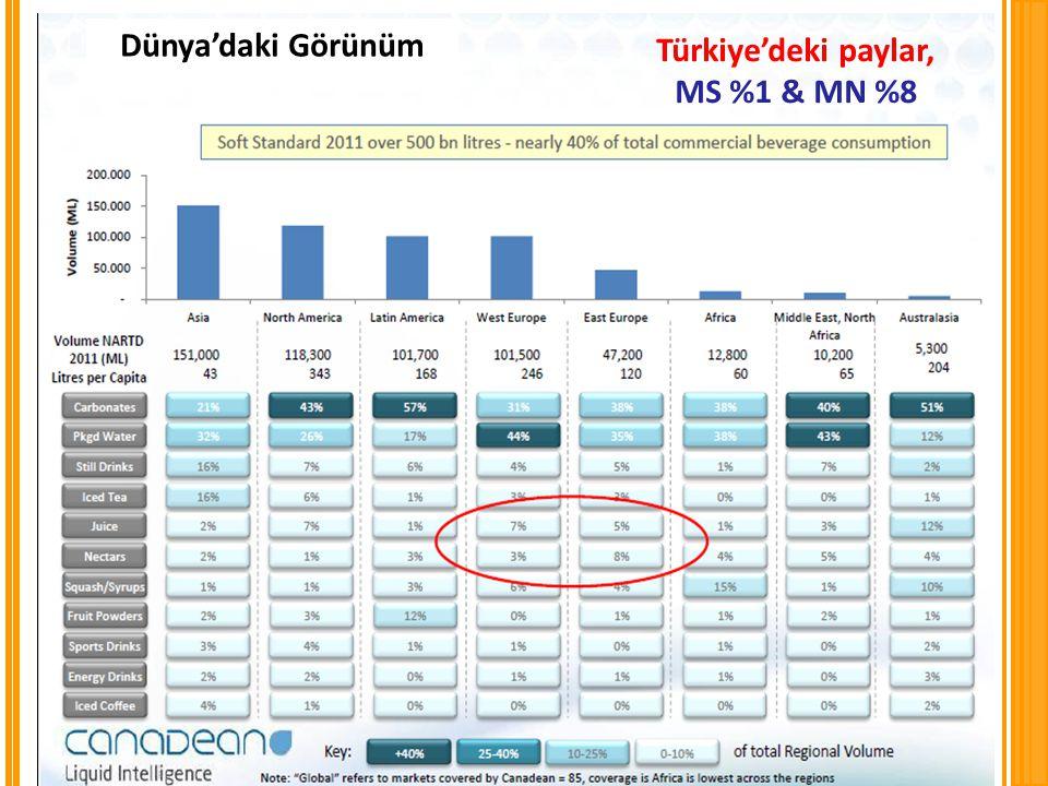 Dünya'daki Görünüm Türkiye'deki paylar, MS %1 & MN %8