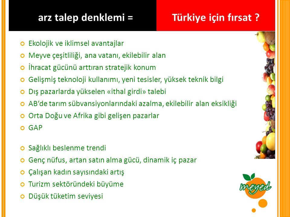 arz talep denklemi = Türkiye için fırsat