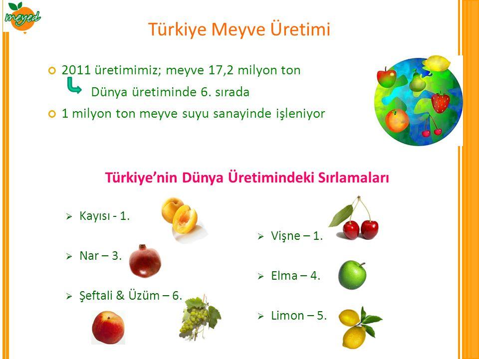 Türkiye'nin Dünya Üretimindeki Sırlamaları