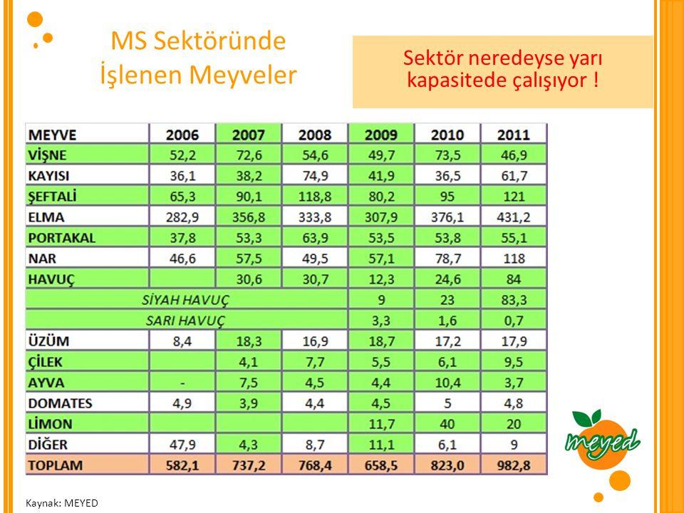 MS Sektöründe İşlenen Meyveler