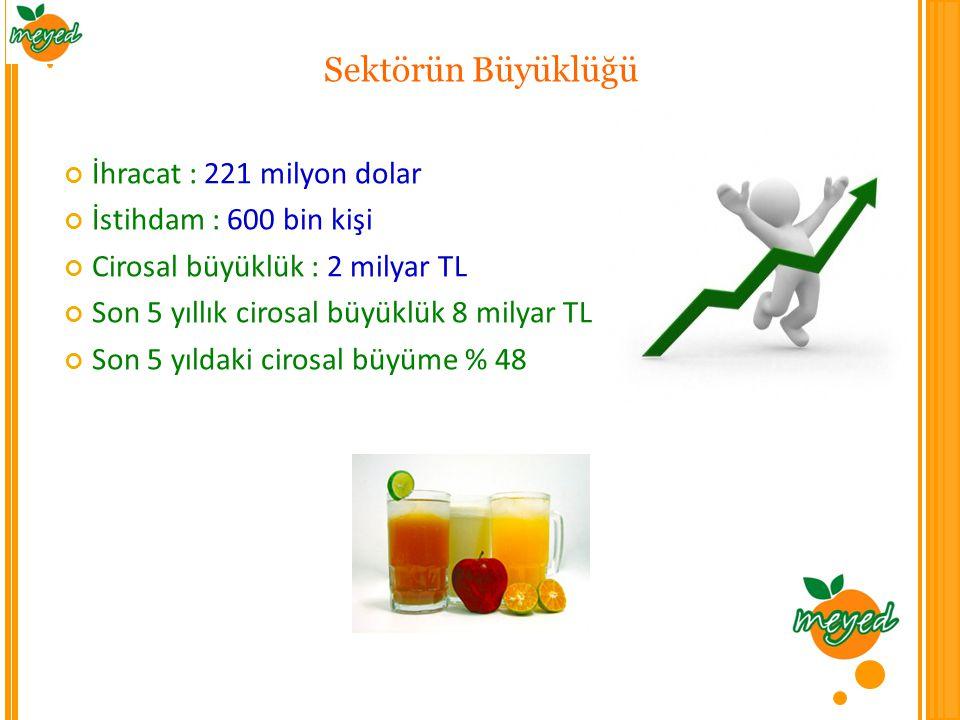 Sektörün Büyüklüğü İhracat : 221 milyon dolar İstihdam : 600 bin kişi