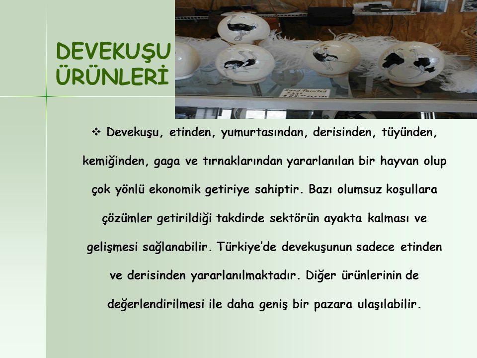 DEVEKUŞU ÜRÜNLERİ.
