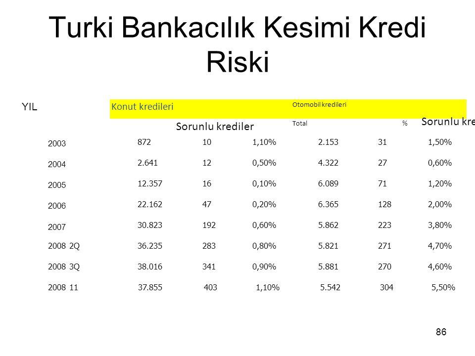 Turki Bankacılık Kesimi Kredi Riski