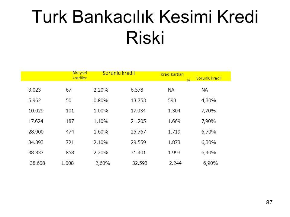 Turk Bankacılık Kesimi Kredi Riski