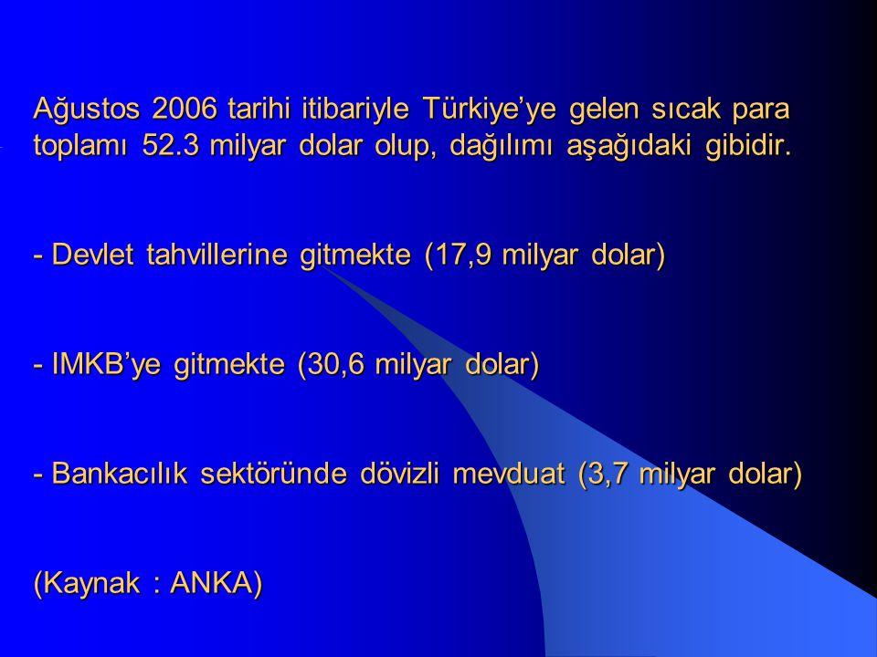 Ağustos 2006 tarihi itibariyle Türkiye'ye gelen sıcak para toplamı 52