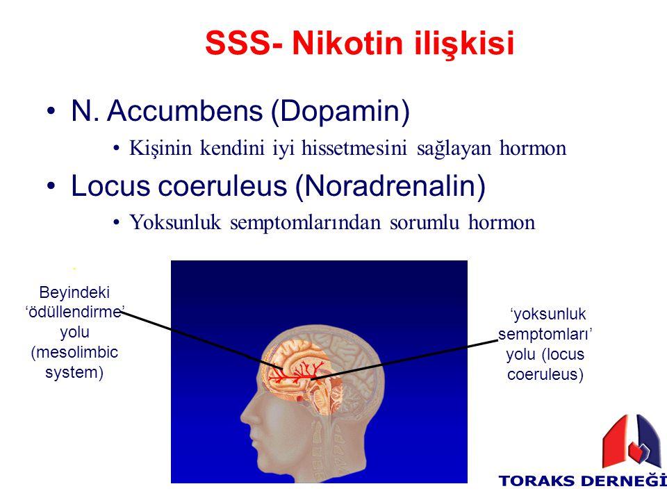 SSS- Nikotin ilişkisi N. Accumbens (Dopamin)