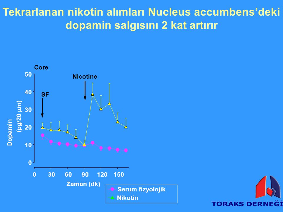 Tekrarlanan nikotin alımları Nucleus accumbens'deki dopamin salgısını 2 kat artırır