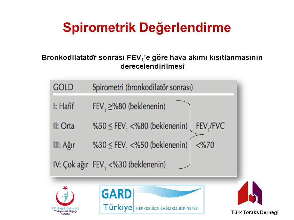 Spirometrik Değerlendirme