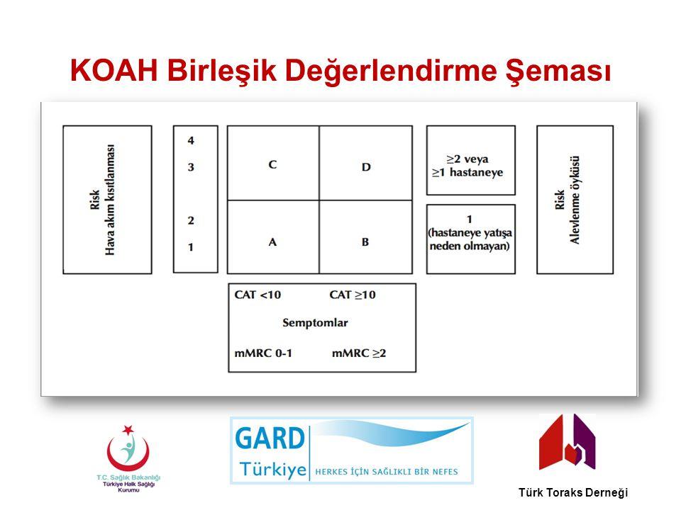 KOAH Birleşik Değerlendirme Şeması