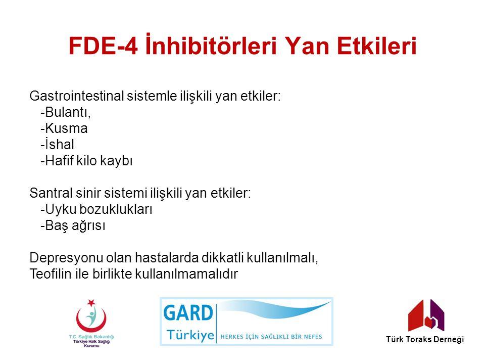 FDE-4 İnhibitörleri Yan Etkileri