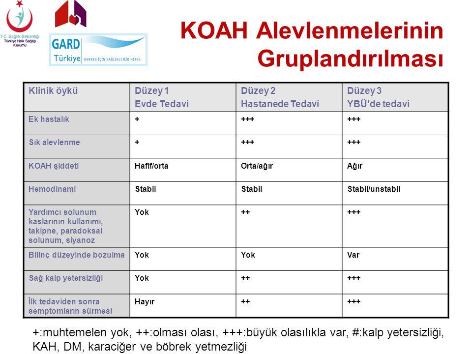 KOAH Alevlenmelerinin Gruplandırılması