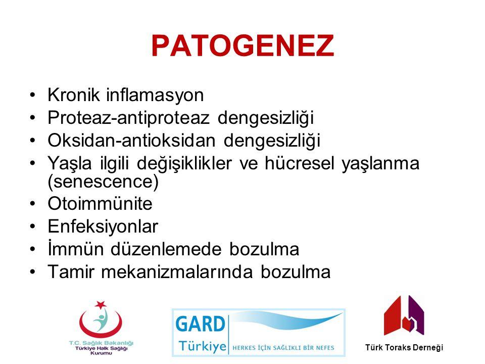 PATOGENEZ Kronik inflamasyon Proteaz-antiproteaz dengesizliği