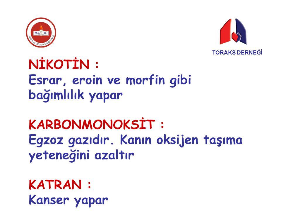 TORAKS DERNEĞİ