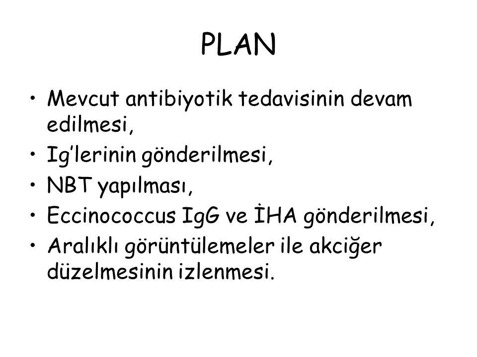PLAN Mevcut antibiyotik tedavisinin devam edilmesi,