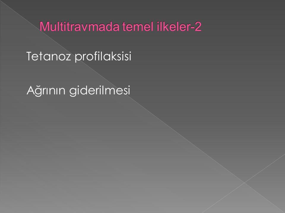 Multitravmada temel ilkeler-2
