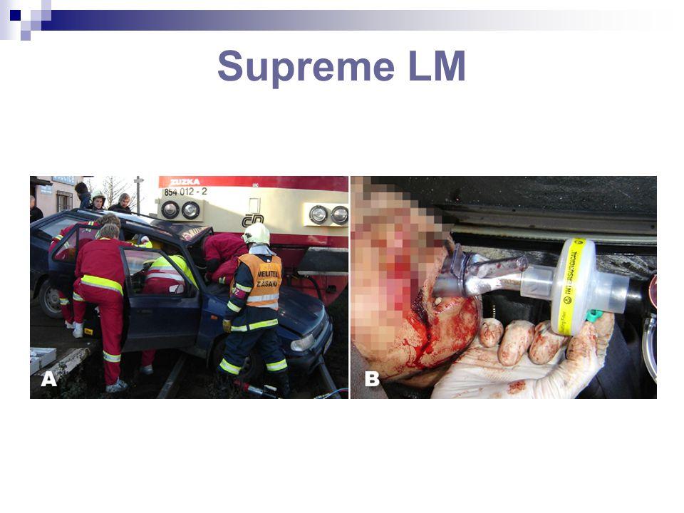 Supreme LM
