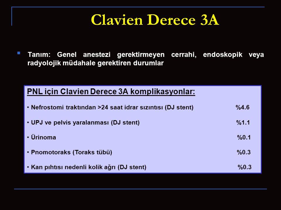 Clavien Derece 3A PNL için Clavien Derece 3A komplikasyonlar: