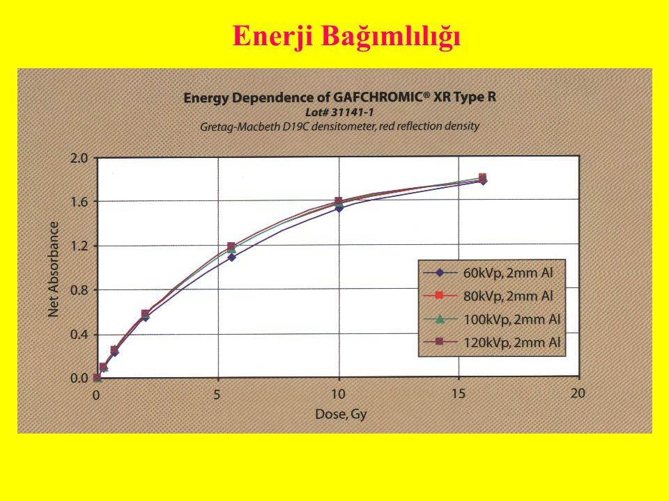Enerji Bağımlılığı