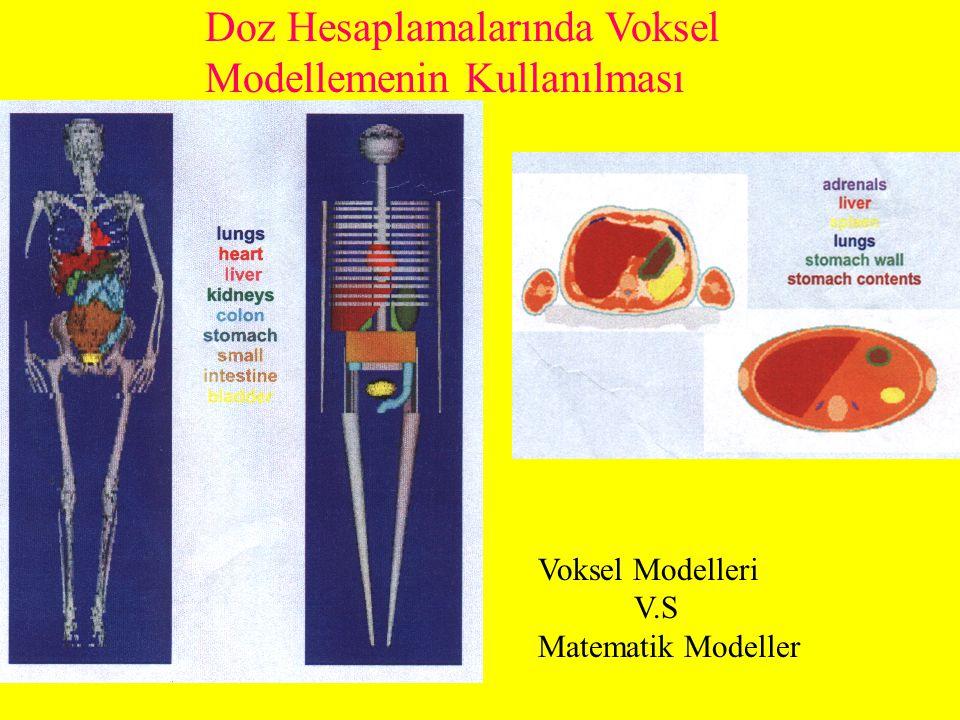 Doz Hesaplamalarında Voksel Modellemenin Kullanılması