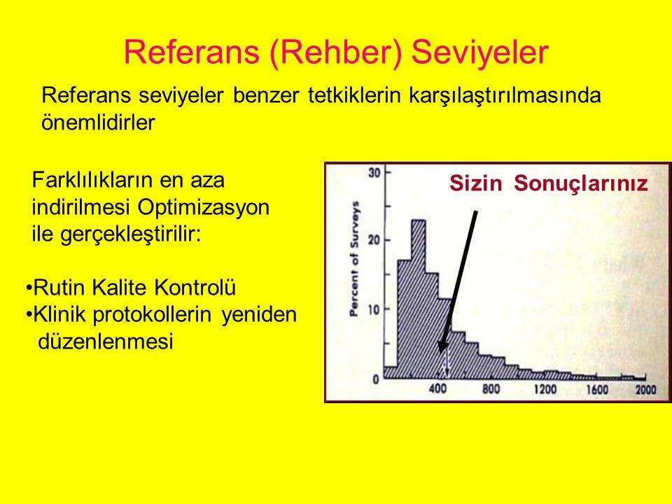 Referans (Rehber) Seviyeler