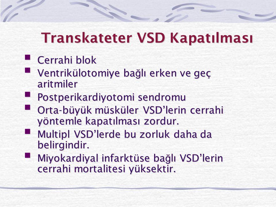 Transkateter VSD Kapatılması