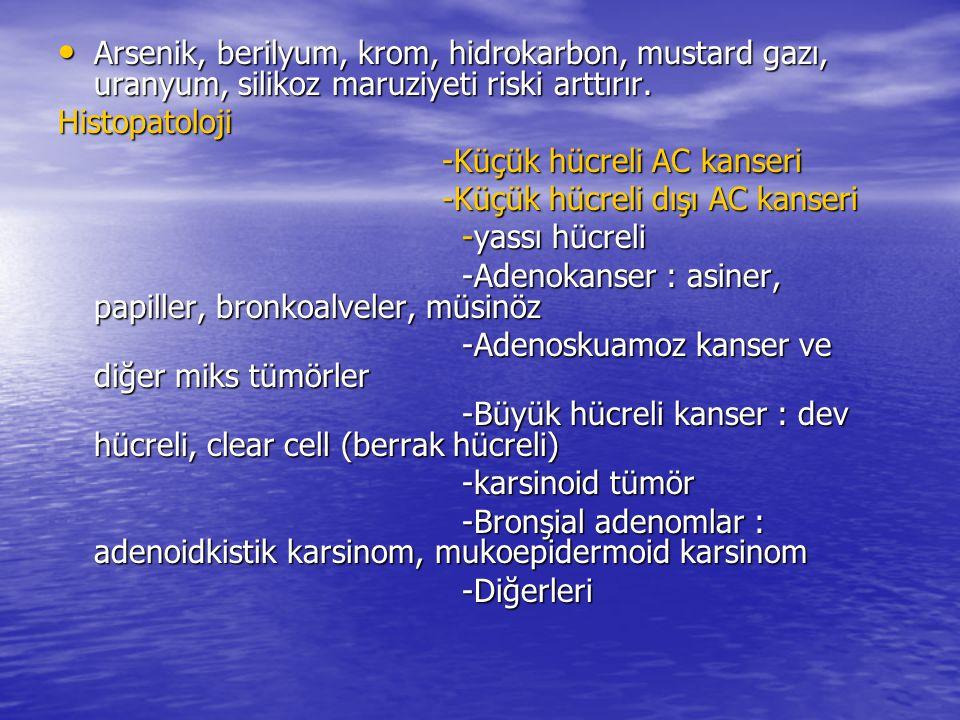 Arsenik, berilyum, krom, hidrokarbon, mustard gazı, uranyum, silikoz maruziyeti riski arttırır.