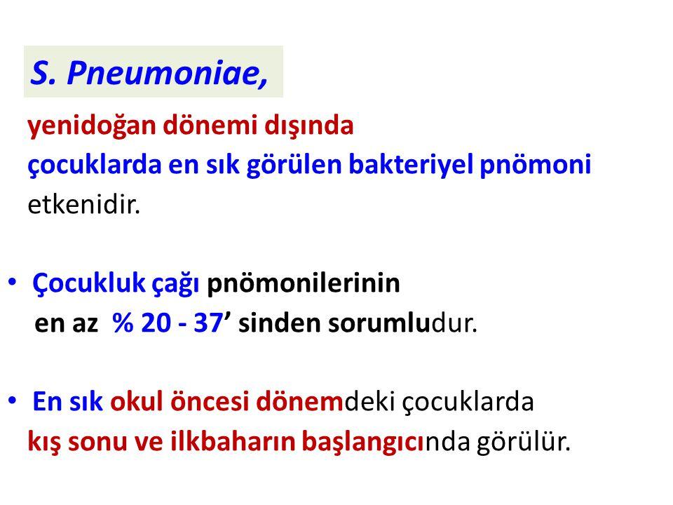 S. Pneumoniae, yenidoğan dönemi dışında