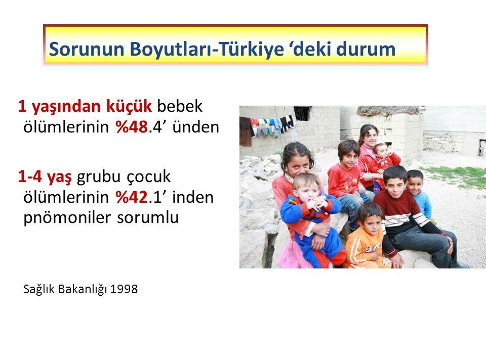 Sorunun Boyutları-Türkiye 'deki durum