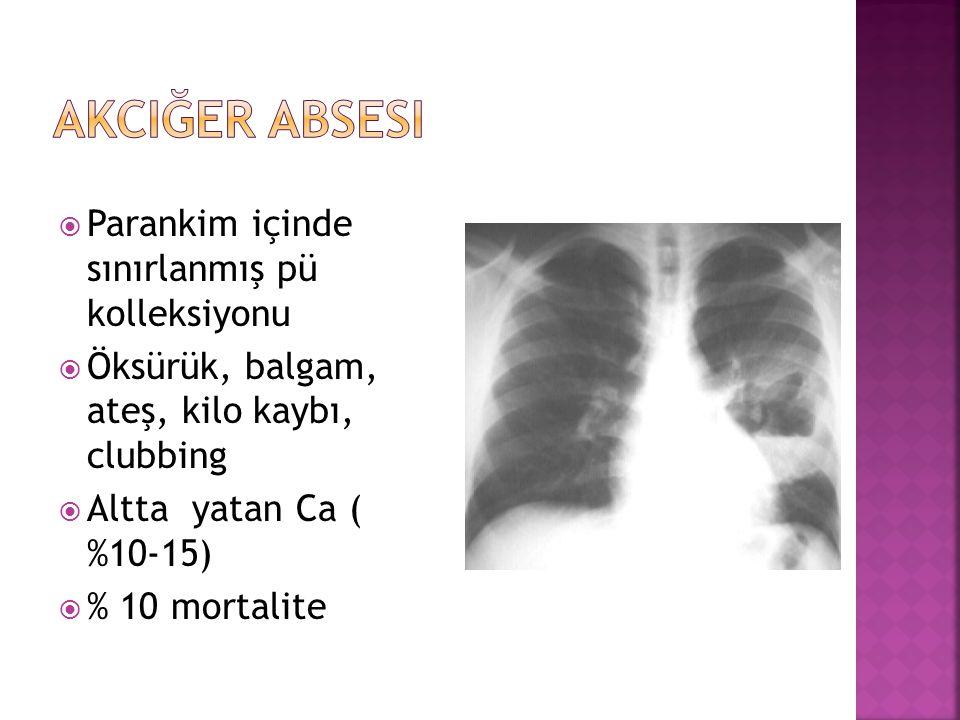 Akciğer Absesi Parankim içinde sınırlanmış pü kolleksiyonu
