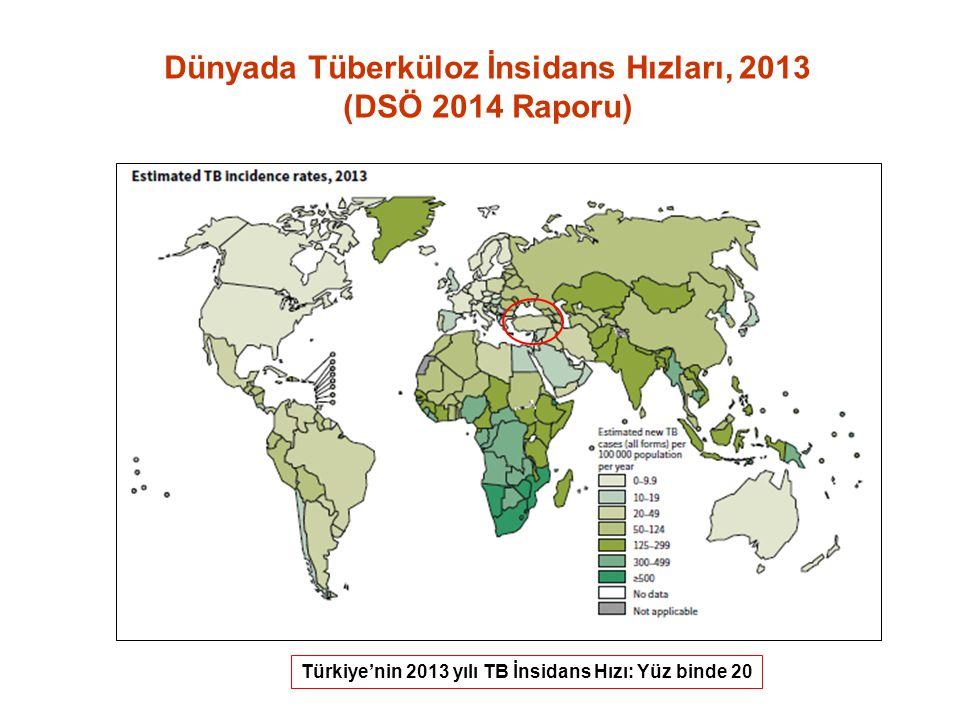 Dünyada Tüberküloz İnsidans Hızları, 2013 (DSÖ 2014 Raporu)