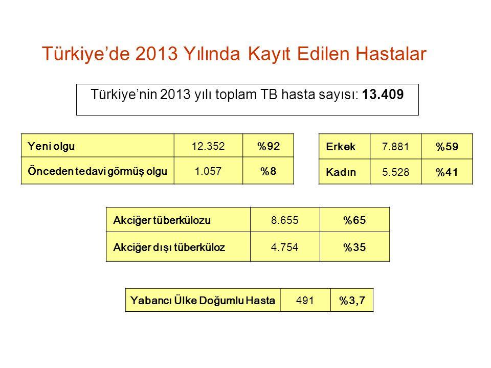 Türkiye'nin 2013 yılı toplam TB hasta sayısı: 13.409