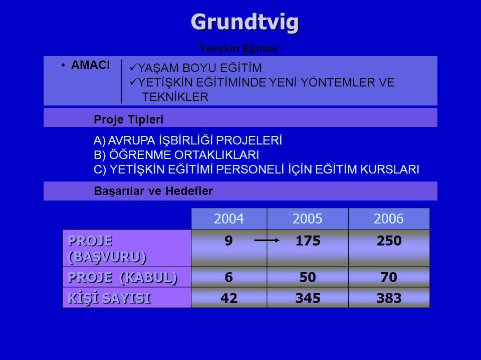 Grundtvig 2004 2005 2006 PROJE (BAŞVURU) 9 175 250 PROJE (KABUL) 6 50