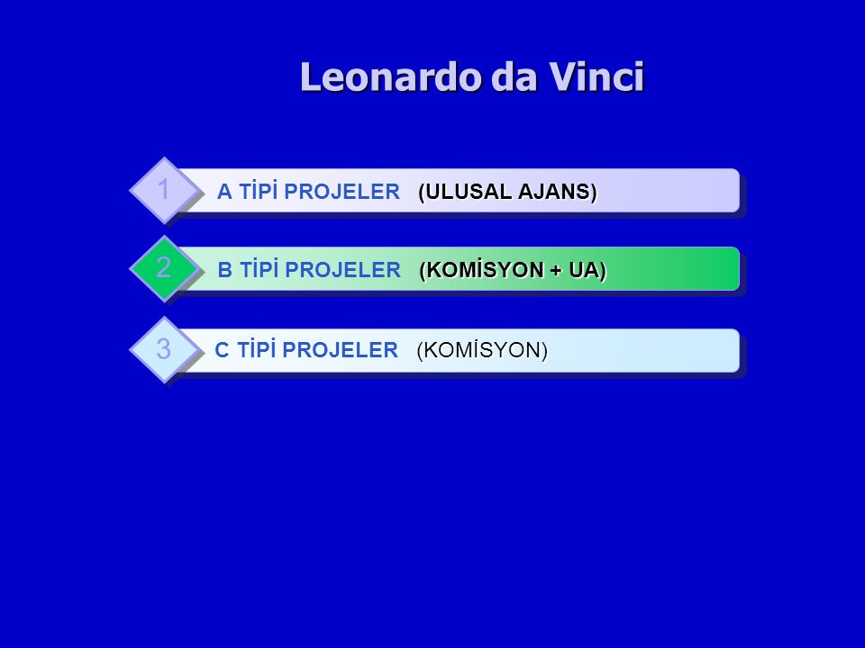 Leonardo da Vinci 1 2 3 A TİPİ PROJELER (ULUSAL AJANS)