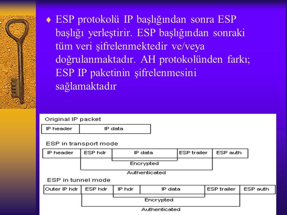 ESP protokolü IP başlığından sonra ESP başlığı yerleştirir