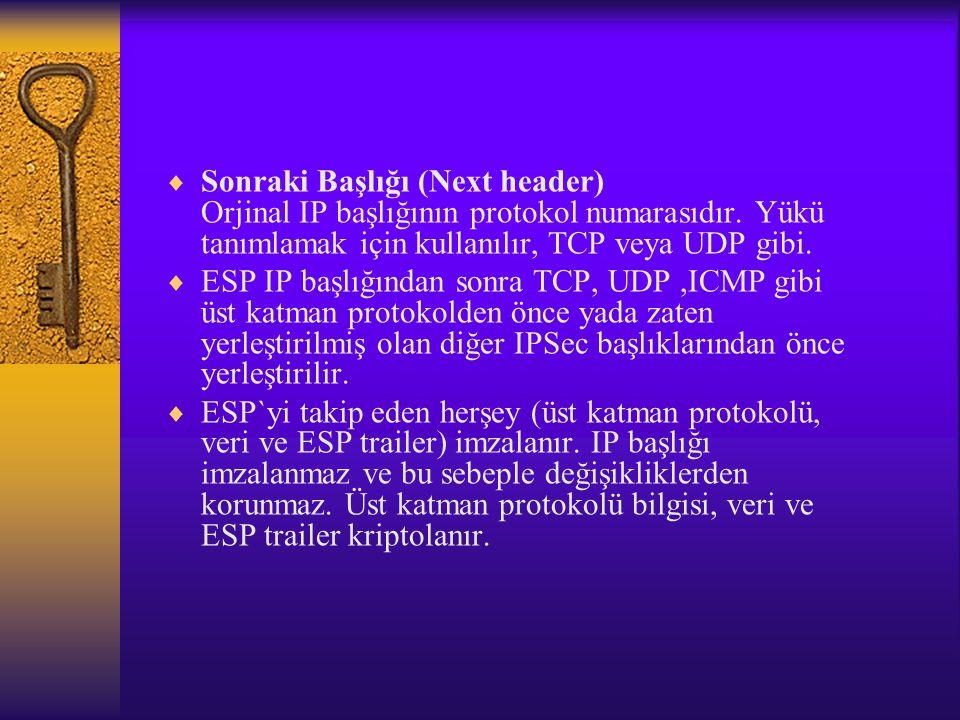 Sonraki Başlığı (Next header) Orjinal IP başlığının protokol numarasıdır. Yükü tanımlamak için kullanılır, TCP veya UDP gibi.