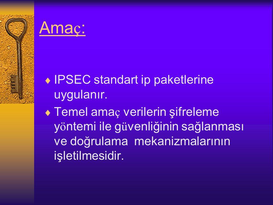 Amaç: IPSEC standart ip paketlerine uygulanır.