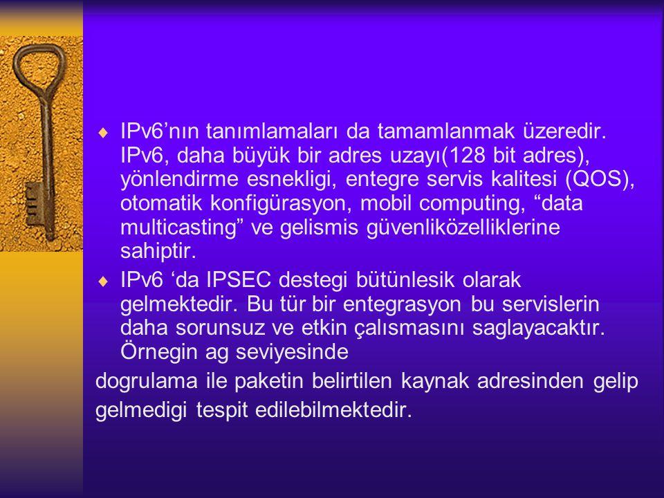 IPv6'nın tanımlamaları da tamamlanmak üzeredir