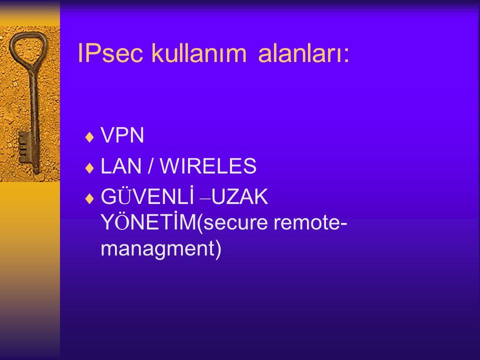 IPsec kullanım alanları: