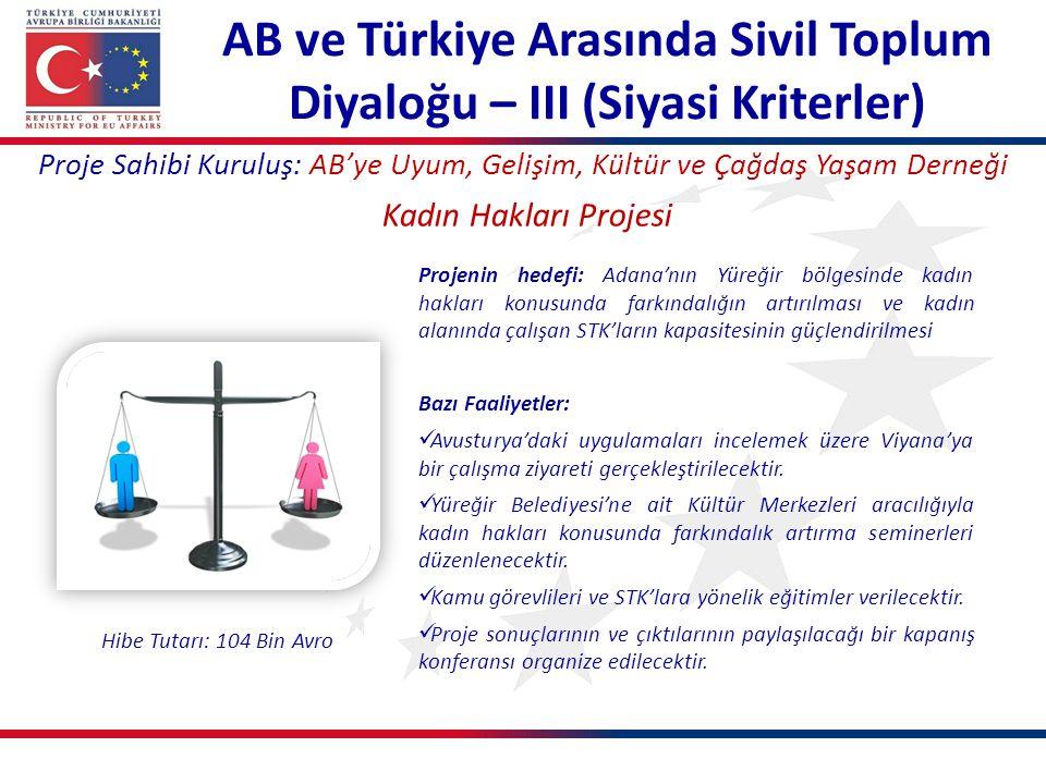 AB ve Türkiye Arasında Sivil Toplum Diyaloğu – III (Siyasi Kriterler)