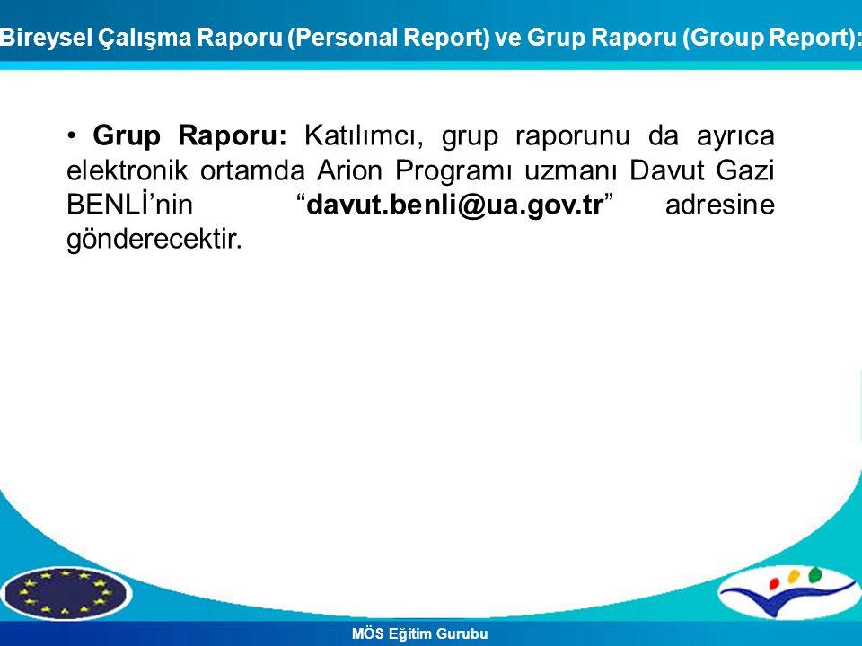 Bireysel Çalışma Raporu (Personal Report) ve Grup Raporu (Group Report):