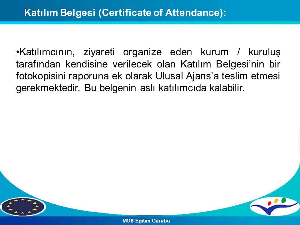Katılım Belgesi (Certificate of Attendance):