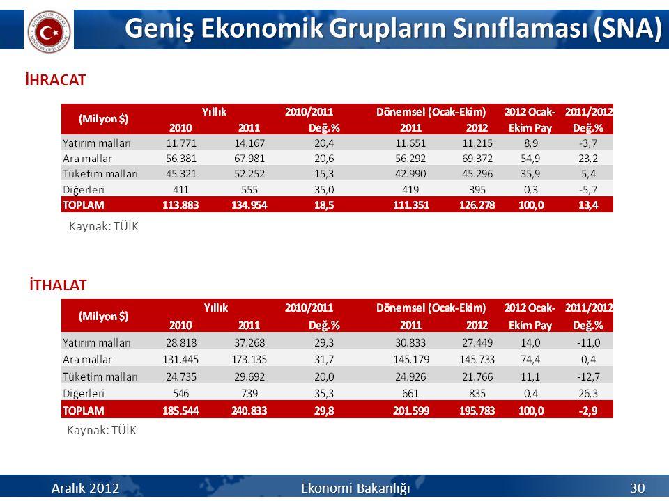 Geniş Ekonomik Grupların Sınıflaması (SNA)