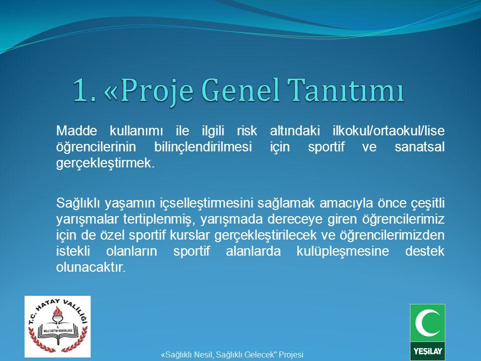 1. «Proje Genel Tanıtımı