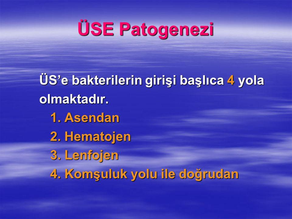 ÜSE Patogenezi ÜS'e bakterilerin girişi başlıca 4 yola olmaktadır.
