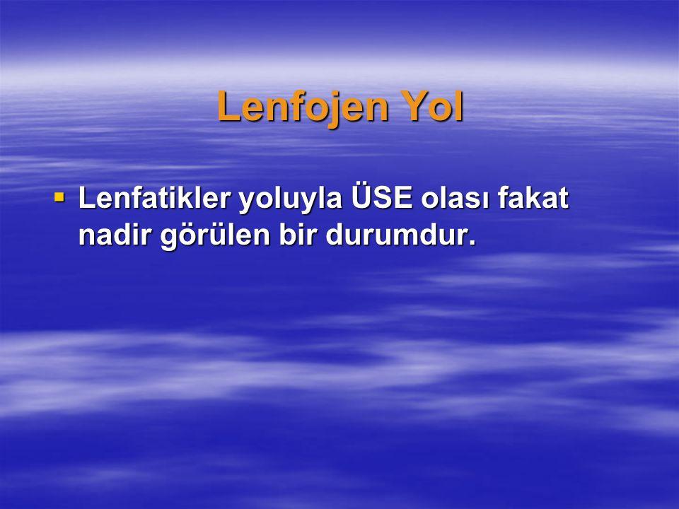 Lenfojen Yol Lenfatikler yoluyla ÜSE olası fakat nadir görülen bir durumdur.