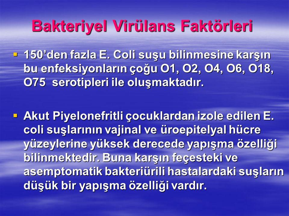 Bakteriyel Virülans Faktörleri