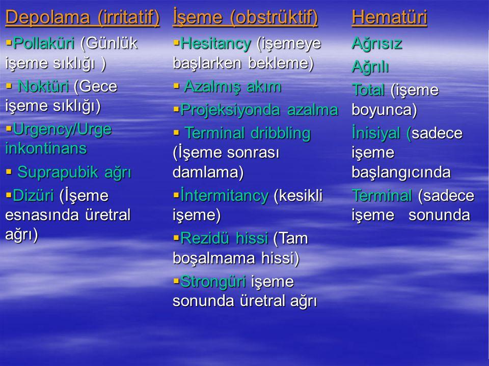 Depolama (irritatif) İşeme (obstrüktif) Hematüri