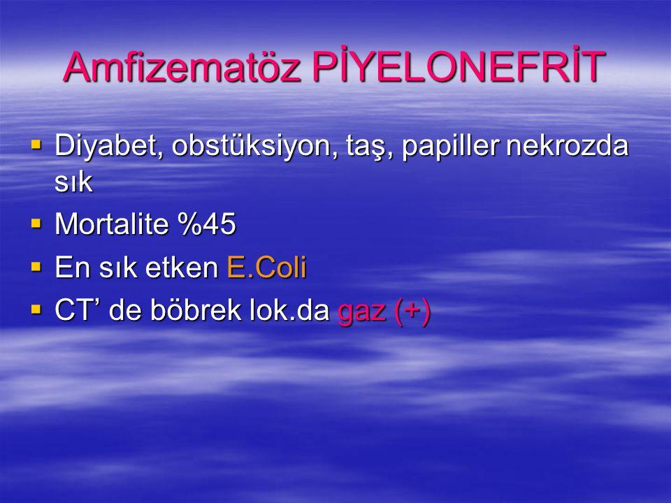 Amfizematöz PİYELONEFRİT