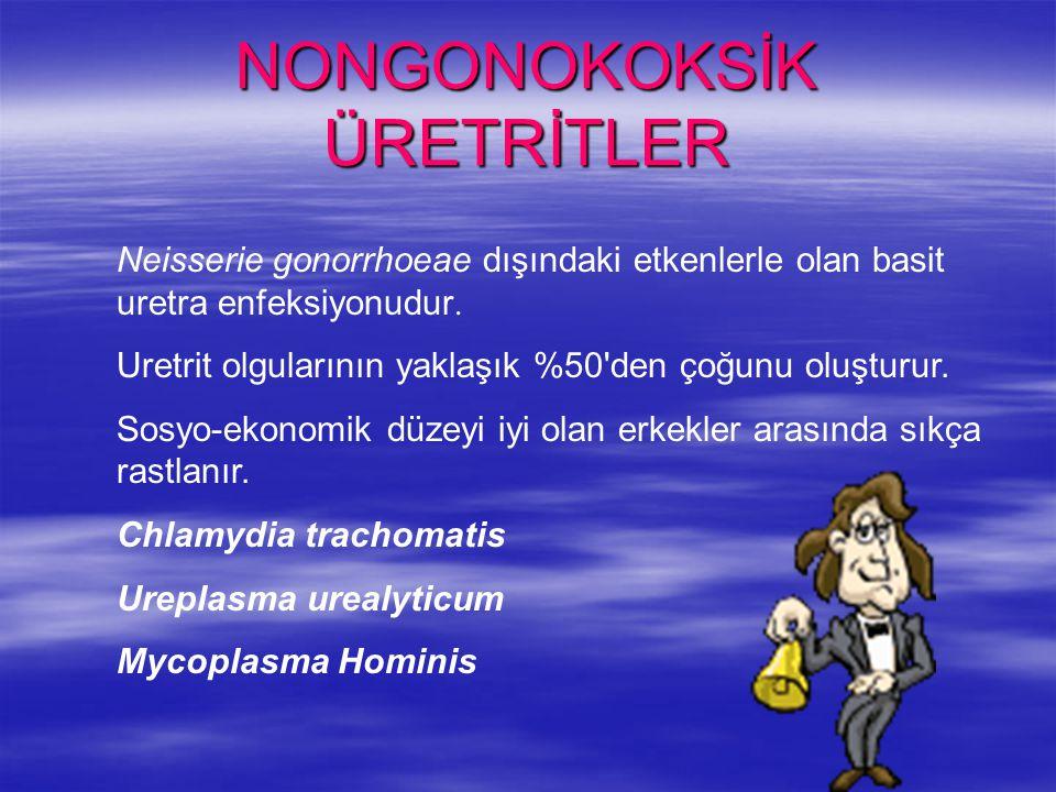 NONGONOKOKSİK ÜRETRİTLER