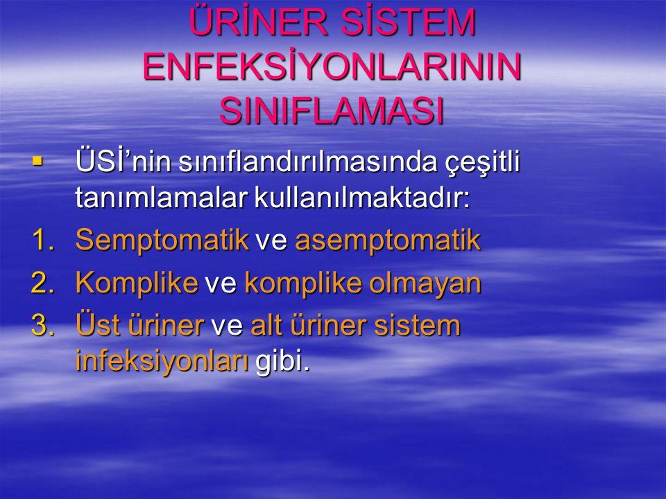 ÜRİNER SİSTEM ENFEKSİYONLARININ SINIFLAMASI